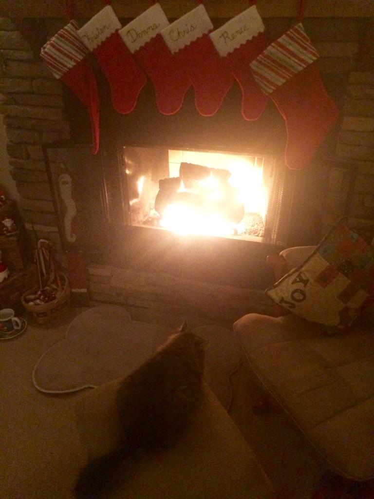 Photo Dec 16, 6 50 28 PM